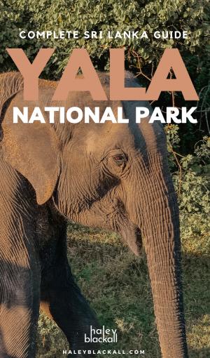 Yala National Park Pin