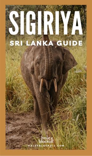 Sigiriya Sri Lanka Pin