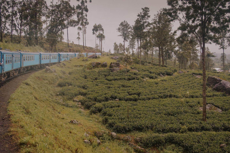 Kandy to Ella Train What to Wear in Sri Lanka