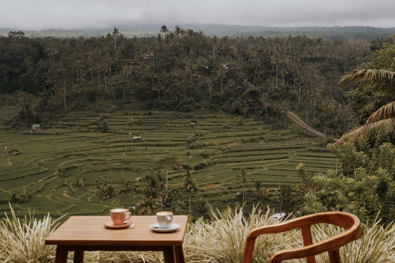 La Montagne Coffee Cafe East Bali Attractions