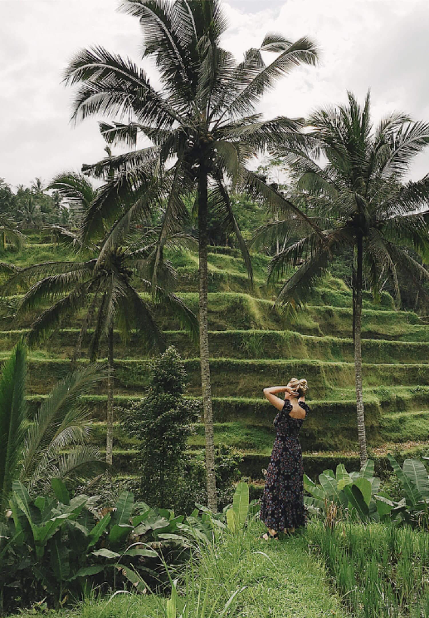 Telalalang Rice Terraces Bali