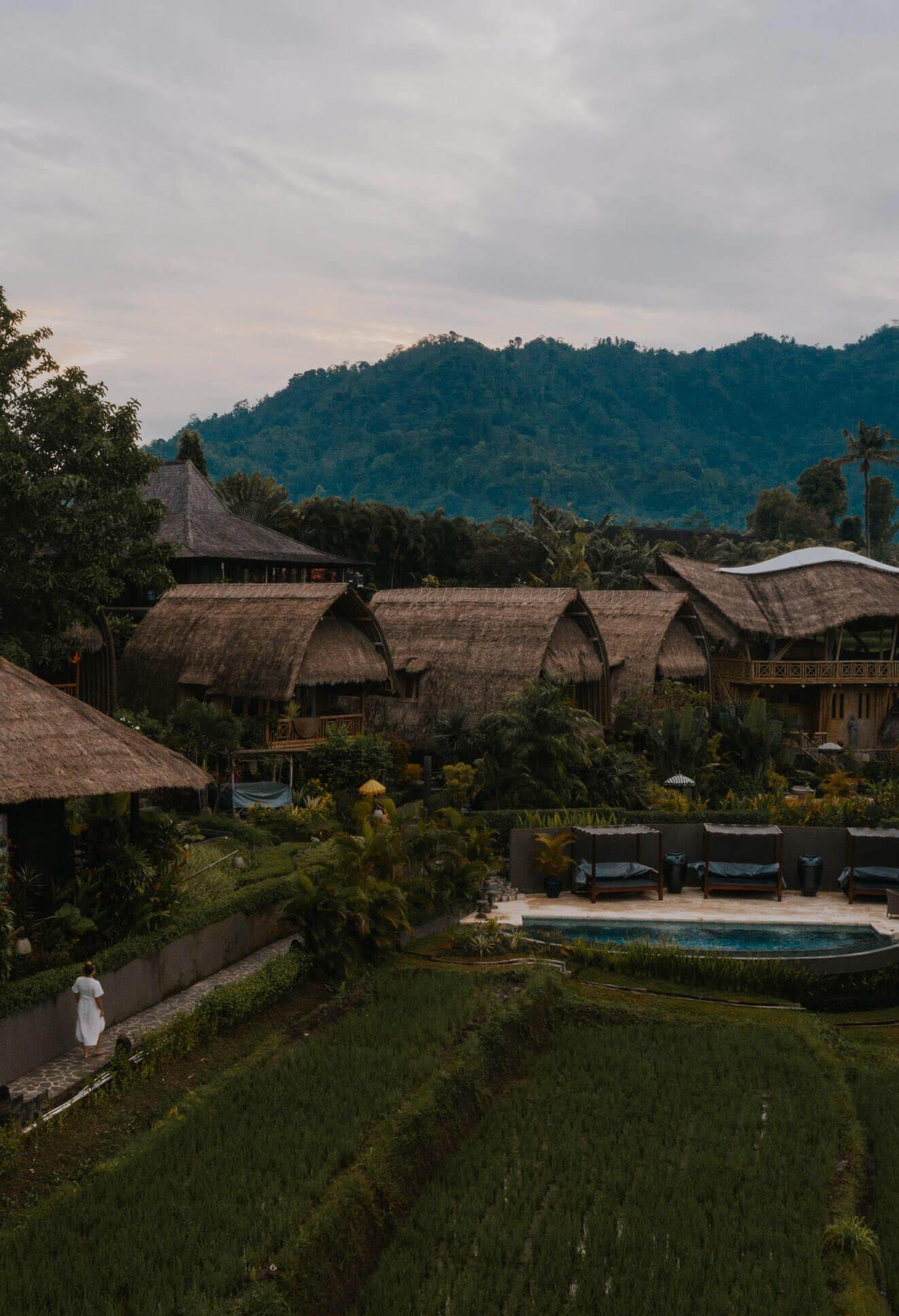 Samanvaya Bali