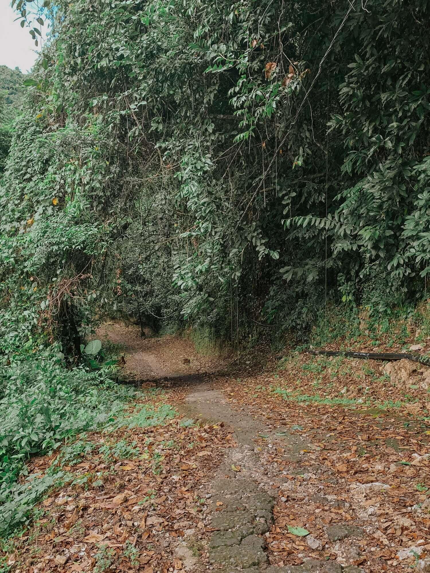 Road to Tembeling Nusa Penida