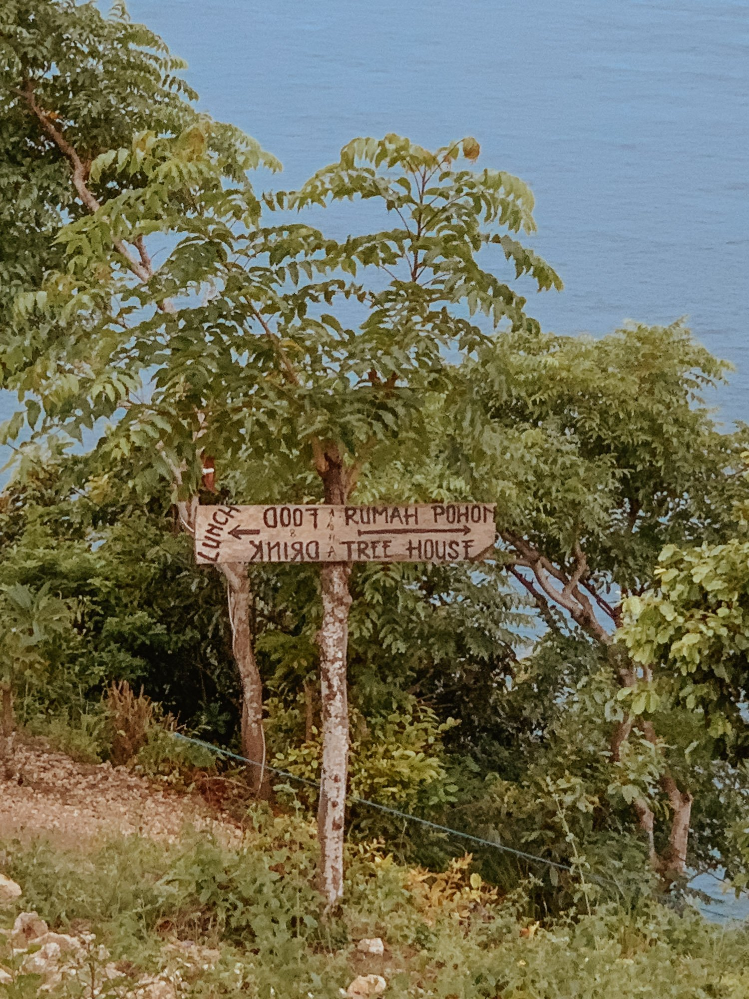 Tree house Nusa Penida Stairs