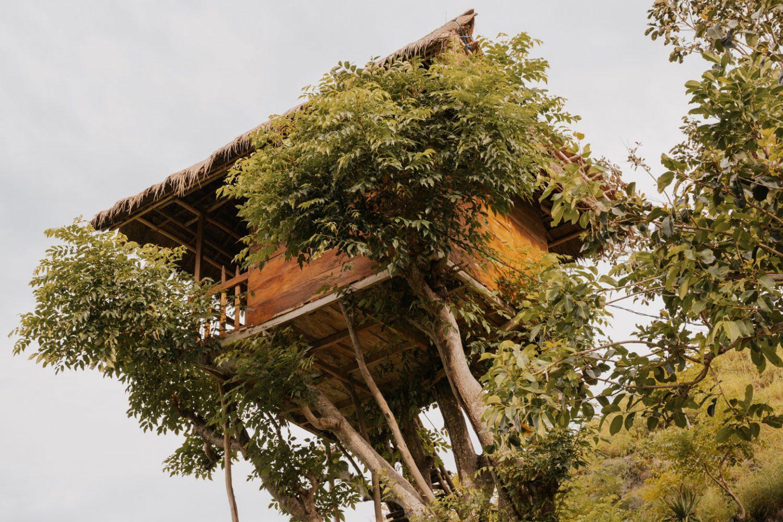 Tree House Nusa Penida
